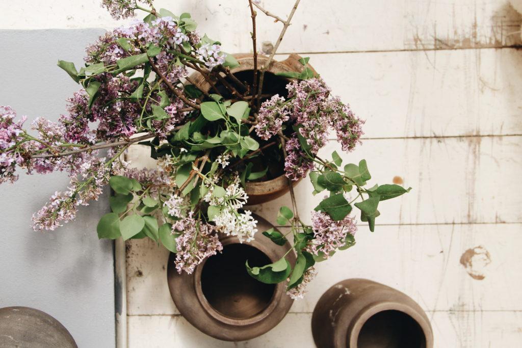 fiori, valdirose, b&b, toscana, firenze