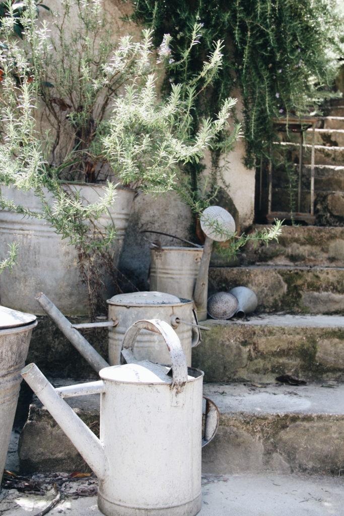 giardino, rosmarino, innaffiatoi, valdirose